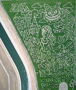 2017 Maze