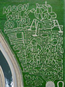 2019 Maze